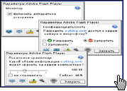 Скриншот Adobe Flash Player 1